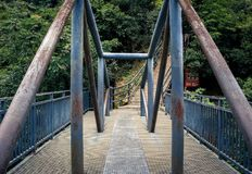 Lianxin bro på den Zhangjiajie medborgaren Forest Park, Wulingyuan, Kina royaltyfria foton