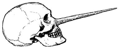 Liar skull (vector). Skull hand, from free-hand drawing Royalty Free Stock Image