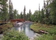 Liard flod Hot Springs i British Columbia, Kanada Arkivfoto