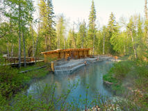 Liard hot springs in northern canada Royalty Free Stock Images