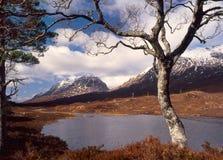 Liathach, een Torridon berg, Schotland Royalty-vrije Stock Foto's