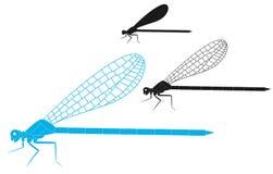 Libélula ilustración del vector