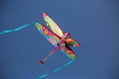 Libélula en el cielo 2 imagen de archivo libre de regalías