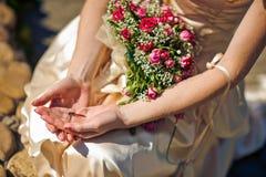 Libélula en la mano de una mujer Imágenes de archivo libres de regalías