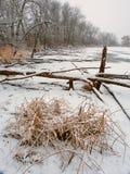 Lib Conservation Area Winter Scene. Snowfall over a frozen wetland at Lib Conservation Area in Illinois Stock Photo