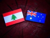 libańczyk obraz stock