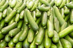 Libanese komkommers Stock Foto