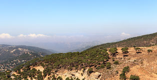 Libanon berglandskap med pinjeskogen Arkivbild