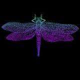 Libel, mooi gevleugeld insect, heldere blauwe violette kleur uit vector illustratie