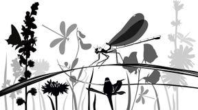 Libel, vlinders, insecten Stock Afbeeldingen