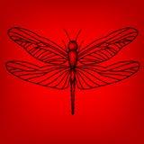 Libelle im Rot Stockbilder