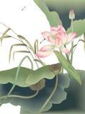 Libelle und schöne Wasserlilie mit grünem Blatt stockbild