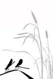 Libellen des vektorschattenbildes zwei Lizenzfreies Stockfoto
