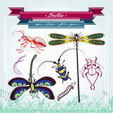 Libellenlarven-Ameisenkäfer Stockfotos