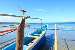 Libellule sur le bateau en bambou, Sulawesi du nord Photos libres de droits