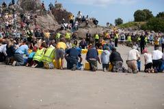 Liberação do pinguim da WWF, Nova Zelândia. Fotografia de Stock Royalty Free