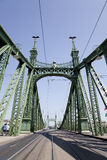 A liberdade da ponte em Budapest Foto de Stock