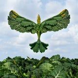 Liberdade do alimento natural