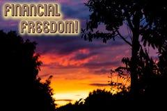 Liberdade financeira do texto da escrita da palavra Conceito do negócio para para fazer decisões grandes da vida sem ser forçada  fotos de stock