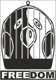 Liberdade - papagaio Imagem de Stock Royalty Free