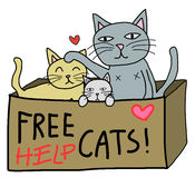 Liberi il gatto Fotografia Stock