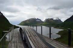 Liberi il ponte d'attaccatura dell'allerta con il fondo vigoroso del fiordo e della montagna Fotografia Stock