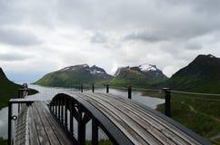 Liberi il ponte d'attaccatura dell'allerta con il fondo vigoroso del fiordo e della montagna Fotografia Stock Libera da Diritti
