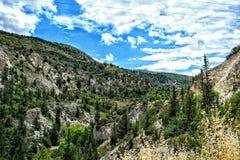 Liberi nelle montagne Fotografia Stock