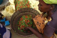 Liberia, afryka zachodnia Zdjęcia Royalty Free