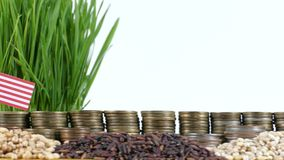 Liberia flag waving with stack of money coins and piles of wheat. And rice seeds stock footage