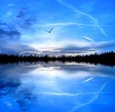 Libertà blu Immagini Stock
