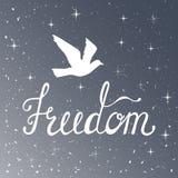 Libertà Citazione ispiratrice Frase moderna di calligrafia con l'uccello della siluetta Modello del cielo notturno Fotografie Stock Libere da Diritti