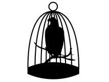 Libertà dell'aquila Immagini Stock Libere da Diritti
