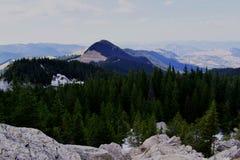 Liberté dans les montagnes images libres de droits