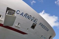 Liberté de carnaval Images libres de droits