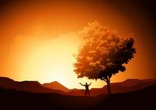 Liberté en nature Images stock