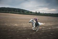 Libertad, caballo galopante Fotografía de archivo