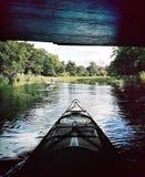 Libertad en el agua tranquila imagen de archivo