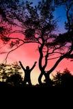 Libertad en naturaleza Fotos de archivo libres de regalías