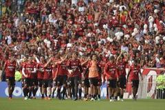 Libertadoreskop 2018 Royalty-vrije Stock Foto's