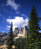 Liberty Bell Mountain. Located in Washington Pass in Washigton State, with evergreen trees in the foreground Royalty Free Stock Image
