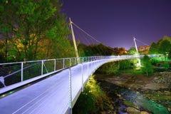 Liberty Bridge royalty-vrije stock afbeeldingen