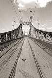 Liberty Bridge in Budapest Stock Photos