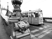 Liberty Bridge a Budapest Fotografie Stock Libere da Diritti