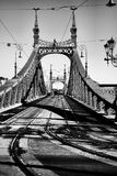Liberty Bridge, Budapest, Hongrie - amende classique Art Photo de style Images libres de droits