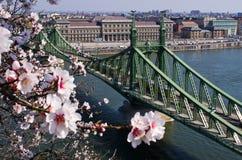 Liberty Bridge in Budapest, Hungary Royalty Free Stock Photos