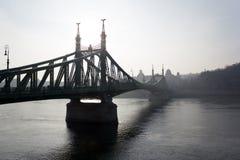 Liberty Bridge, Budapest Royalty Free Stock Images
