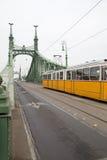 Liberty Bridge mit dem Tramüberschreiten Lizenzfreies Stockbild