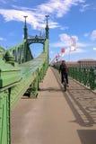 Liberty Bridge si inverdisce il ponte a Budapest nel giorno di estate soleggiato Immagini Stock