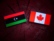 Libijczyk flaga z kanadyjczyk flaga na drzewnym fiszorku odizolowywającym obraz royalty free